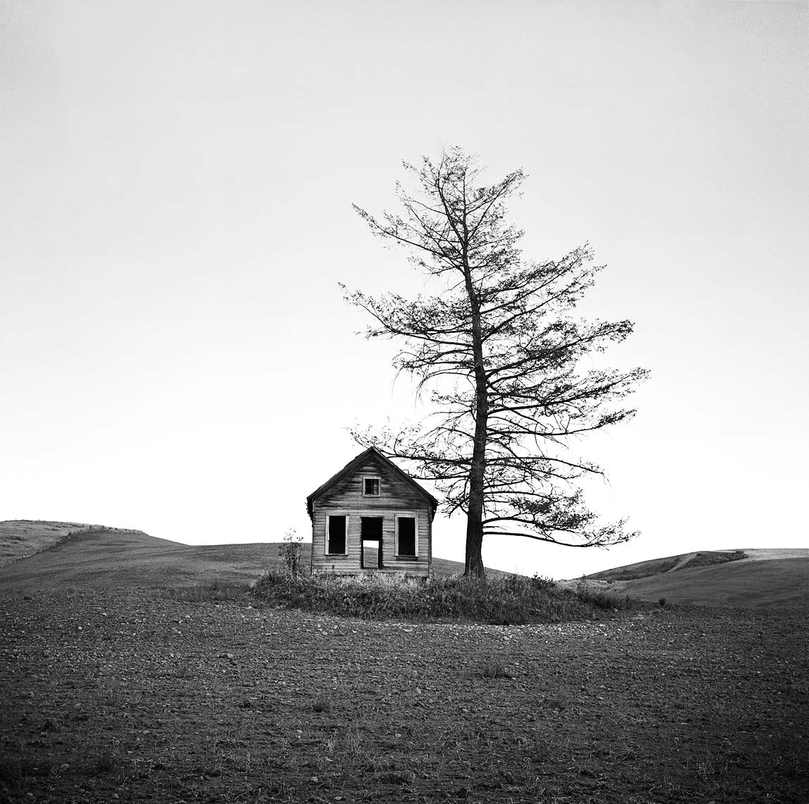desolation-house